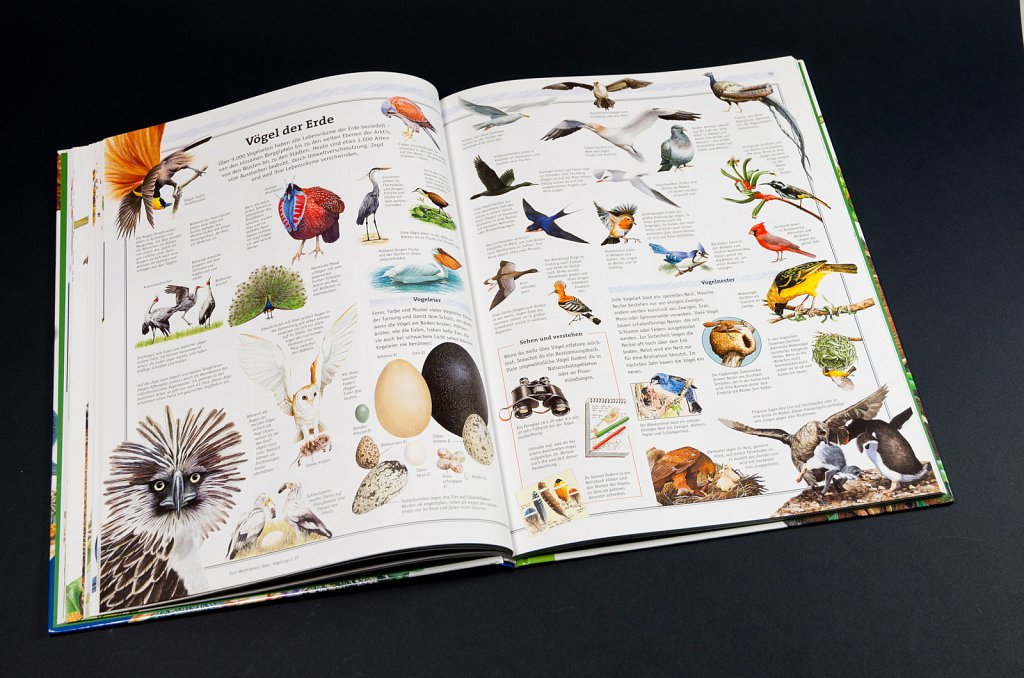 Ravensburger Buch der Natur